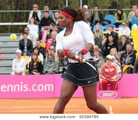 KHARKOV, UKRAINE - APRIL 22: Match between Serena Williams (pictured) and Lesia Tsurenko during Fed Cup tie between USA and Ukraine in Superior Golf and Spa Resort, Kharkov, Ukraine at April 22, 2012