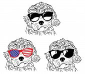 Set Of Portraits Of Dogs In Glasses. A Collection Of Vector Heads Of Dogs Of The Breed Of The Breed  poster