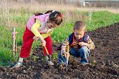 stock photo of hoe  - Two little children planting seeds and weed beds in the field - JPG