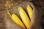 Grains Of Ripe Corn On Wooden Background.fresh Corn On Cobs On Rustic Wooden Background In Burlap Ne poster