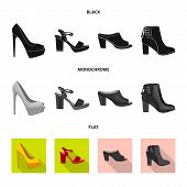 Vector Illustration Of Footwear And Woman Icon. Collection Of Footwear And Foot Vector Icon For Stoc poster