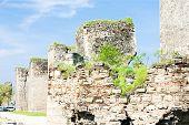 picture of former yugoslavia  - Smederovo Fortress - JPG