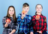 Healthy Lifestyle. Boy And Girls Friends In Similar Checkered Clothes Eat Apple. Teens With Healthy  poster