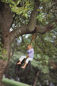picture of tire swing  - Young girl sitting on tire swing - JPG