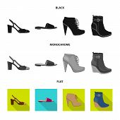 Isolated Object Of Footwear And Woman Icon. Collection Of Footwear And Foot Stock Vector Illustratio poster