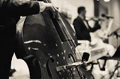 Classical Music Professional Cello Player Solo Performance, Hands Close Up, Unrecognizable Person poster
