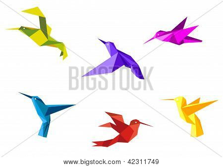 Doves and hummingbirds