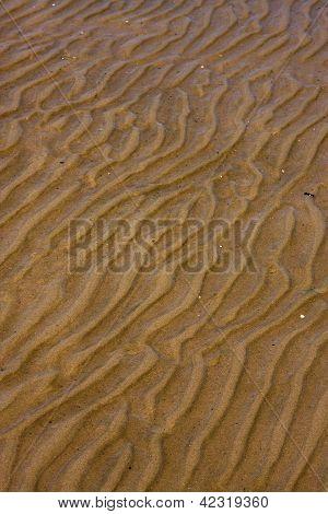 Shore Texture And Curved Line In Colonia Del Sacramento