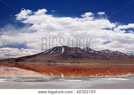 Bolivia - el Parque Nacional Eduardo Avaroa