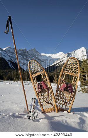 Old Snowshoes With Bamboo Poles