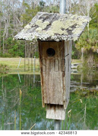 Rustic Birdhouse On Pond