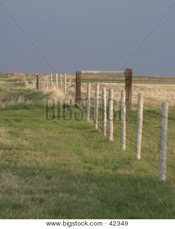Praire Fence Line