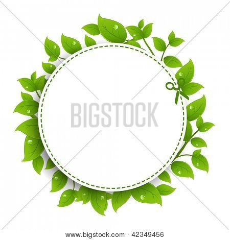 Announcement Coupon With Green Leaves With Gradient Mesh, Isolated On White Background, Vector Illustration