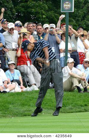 Tiger Woods Pga Golf Professional