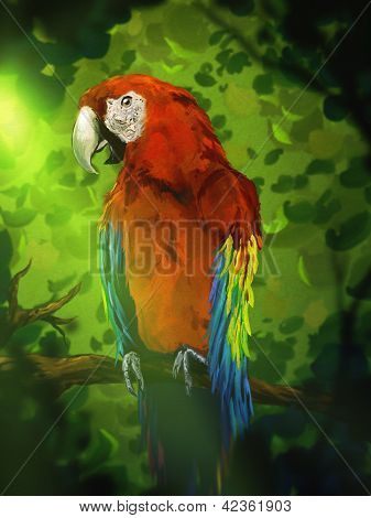 Colorful Macaw Parrot - Digital Painting