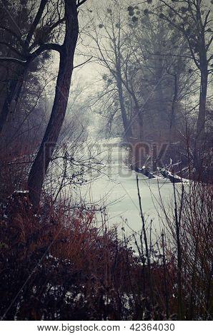 Fairytale winter landscape
