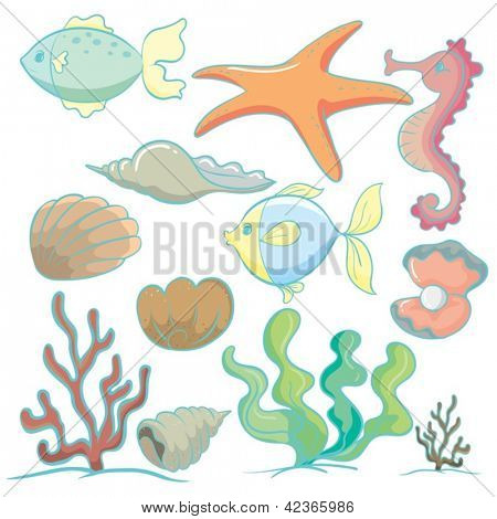 illustration of various sea animals and plants on a white background