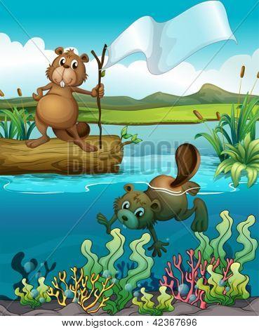 Abbildung der Biber im Fluss