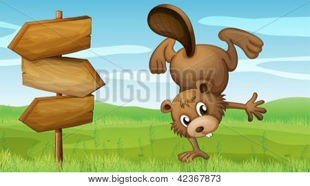 Illustration of a beaver and the signboard
