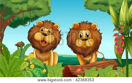 Illustration of two lions in the forest