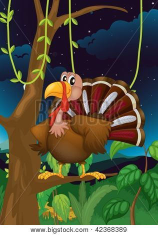 Illustration of a turkey on a branch of a tree