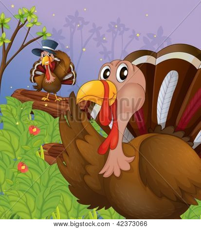 Illustration of two turkeys in the forest