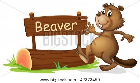 Illustration of a beaver beside a wooden signage on a white background