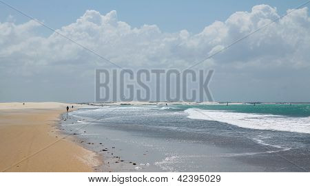 Beach In Brazil