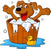 pic of washtub  - Vector illustration of dog bathing time isolated on white - JPG
