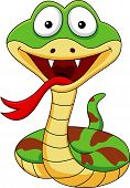 picture of green snake  - Vector illustration of funny snake cartoon isolated on white - JPG