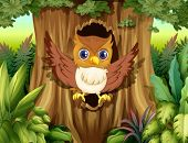image of hollow  - Illustration of a hollow tree with an owl - JPG