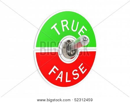 True false toggle switch