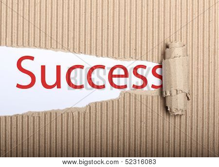 Success Text On Paper And Torn Cardbox