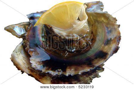 Oyster & Lemon