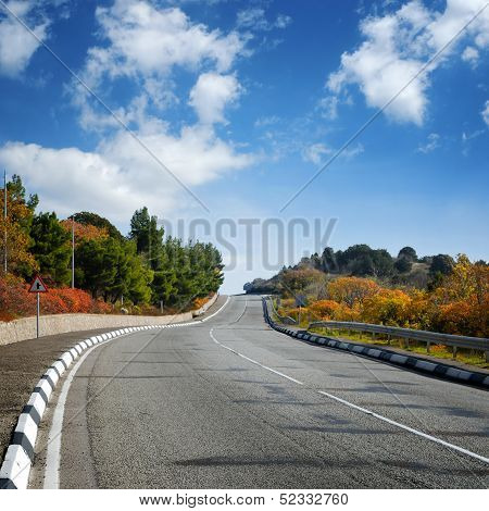 Wide Road Between Autumn Trees