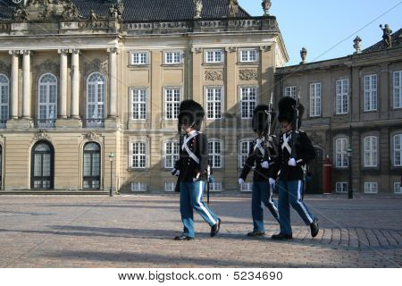 Denmark Guards