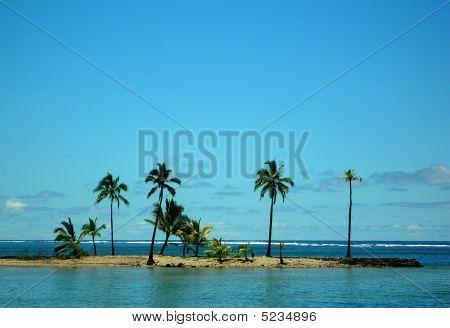 Fiji Break