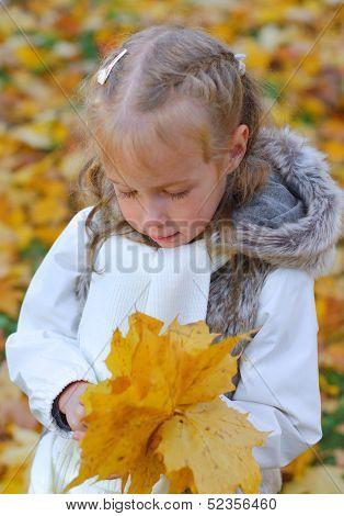 Little Girl Doing Herbarium From Fallen Autumn Leaves.