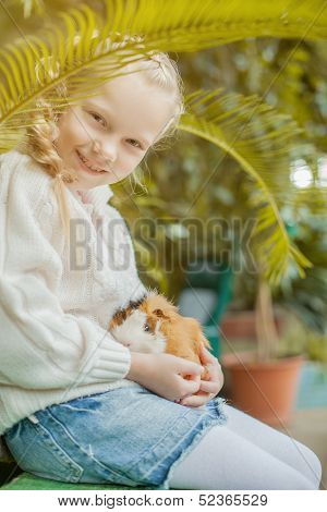 Adorable girl playing with cavy looking at camera