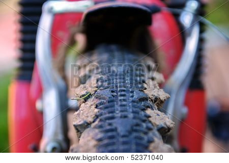 Bike Tread Tire