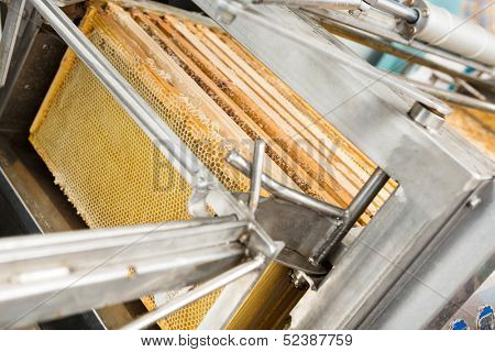 Closeup of honey extraction plant in beekeeping factory