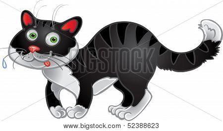 Black fun cat