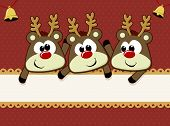 foto of rudolph  - cute baby reindeers for christmas card with copy space - JPG