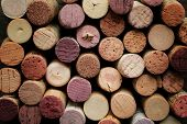 image of bordeaux  - Close up of a cork wine with different variation of wine color - JPG