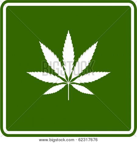 cannabis or marijuana leaf sign
