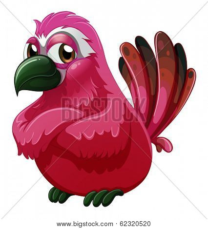 Illustration of a big bird on a white background