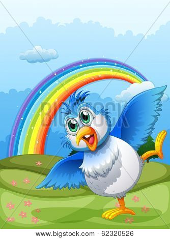 Illustration of a cute bird at the hilltop with a rainbow in the sky
