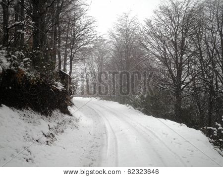 Beautiful Snowy Road Argentina