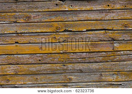 Wood Shingles Wall