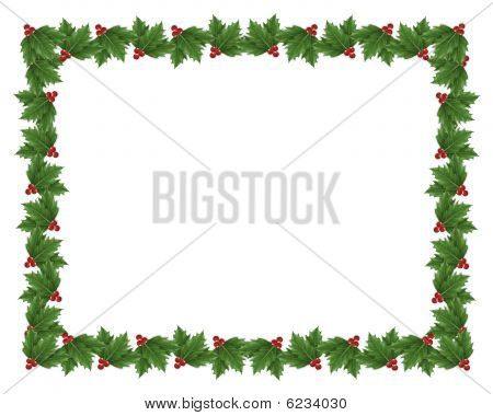 Christmas Holly border illustration